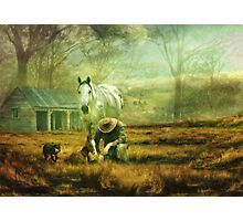 The Stock Horse Photographic Print