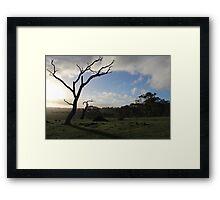 Summit Fire Track, Mount Barker Springs, South Australia Framed Print