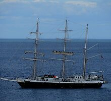 South Devon Brixam St Mary Bay  Lord Nelson May 2011 by richard wolfe