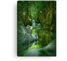 The Fairy Glen , Betws-y-Coed Canvas Print