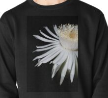 Angelic Body Pullover