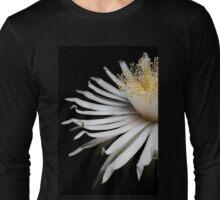 Display Long Sleeve T-Shirt