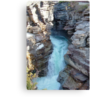 Athabasca Falls on Athabasca River Canvas Print