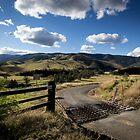 Bretti Reserve by Daniel Rankmore