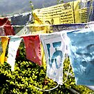Prayer Flags by KerryPurnell