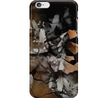 The Broken Frame iPhone Case/Skin