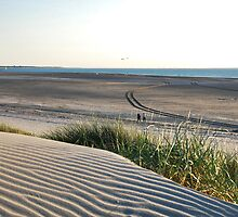 View over our North Sea Beach... by Adri  Padmos