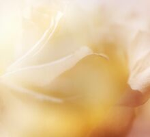 Sensual Touch of Nature. Inner Glowing by JennyRainbow