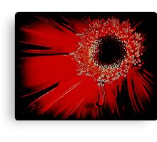 Red Gerbera Abstract Canvas Print