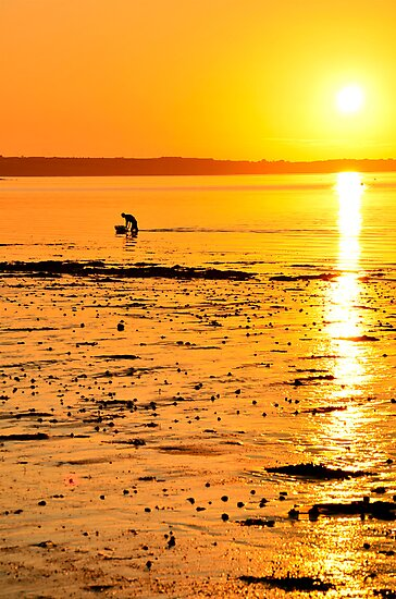 Skerries Sunset Silhouette by Martina Fagan