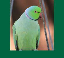 Indian Ringneck Parrot in my garden T-Shirt