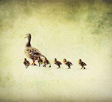 Ducks in a Row by Lea  Weikert