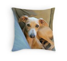Adopted Miniature Greyhound...Archer Throw Pillow