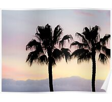 Palm trees at sunrise Poster