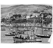Conway Bay - B&W Poster