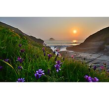 Cornwall: Spring Colours at the Strand Photographic Print