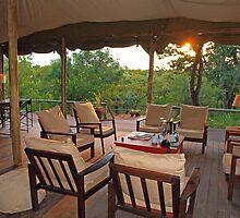 Safari sunset by Dan MacKenzie