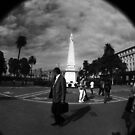 Plaza de Mayo by Michael Dunn