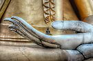 Hand of Buddha by Adrian Evans