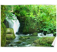 Wexford Evenvale Waterfalls  Poster