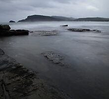 Bull Kelp Point by Adam  Davey