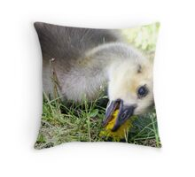 Dandelions are my favourite Throw Pillow