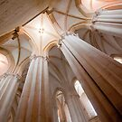 Mosteiro de Alcobaça . the nave by terezadelpilar ~ art & architecture