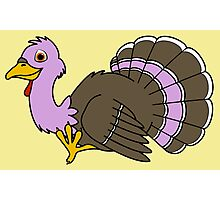 Thanksgiving Turkey with Light Purple Feathers Photographic Print
