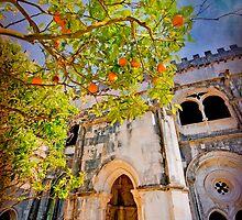 Claustro. Mosteiro by terezadelpilar ~ art & architecture