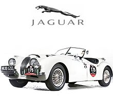 Jaguar XK 120 by garts
