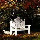 A Place To Sit by Gabrielle  Lees