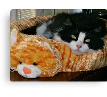 Now This Is A Cat Bed! Canvas Print