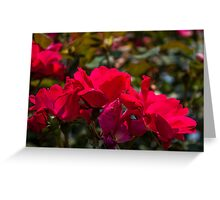 Flowers I Greeting Card