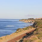 160-California Coast along Highway 1 by Tedd Wenrick