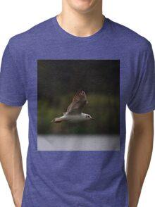 Gull flying in rain Tri-blend T-Shirt