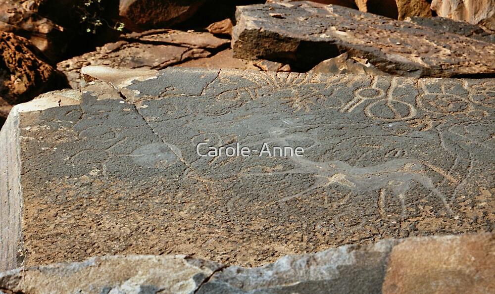Rock Engravings, Twyfelfontein by Carole-Anne