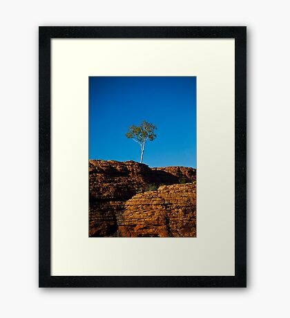 One tree Rock Framed Print