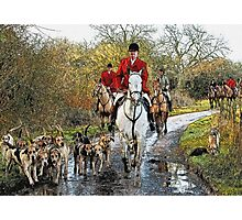 Horse and hounds Photographic Print