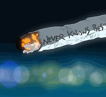Never Knows Best by Connor Keane