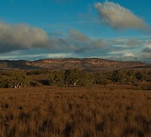 Flinders - View from Moralana Scenic Drive by Caroline  Lloyd