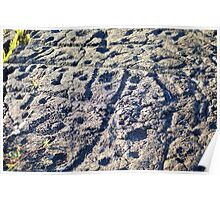 Pu'u Loa Petroglyphs Poster