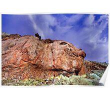 Pig Nose Rock Poster