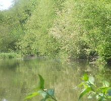 Pussy Willow River - May 2012 by Penny V-P