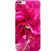 Pink Flower iPhone Case iPhone Case/Skin