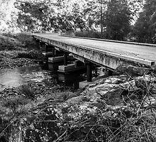 Bucketts Way Bridge - Gloucester by Daniel Rankmore