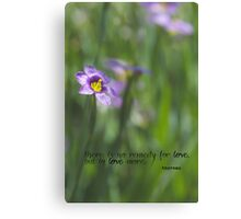 No Remedy for Love Canvas Print