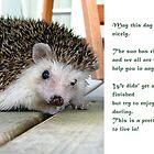 Hedgehog wishing you a good day by Susanna Hietanen