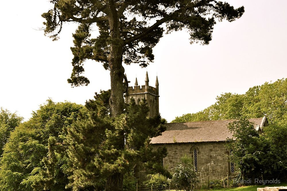 The Ireland Series-Ardcroney Church, County Clare by Brandi  Reynolds
