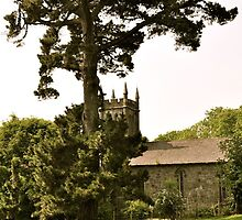 The Ireland Series-Ardcroney Church, County Clare by Brandi  Reynolds