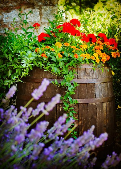 Tuscan Flower Barrel by Lynnette Peizer